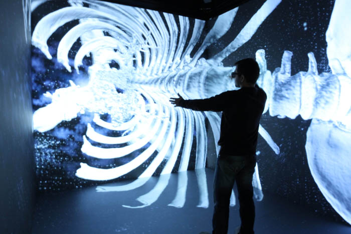 New High Performance Cave Automatic Virtual Environment