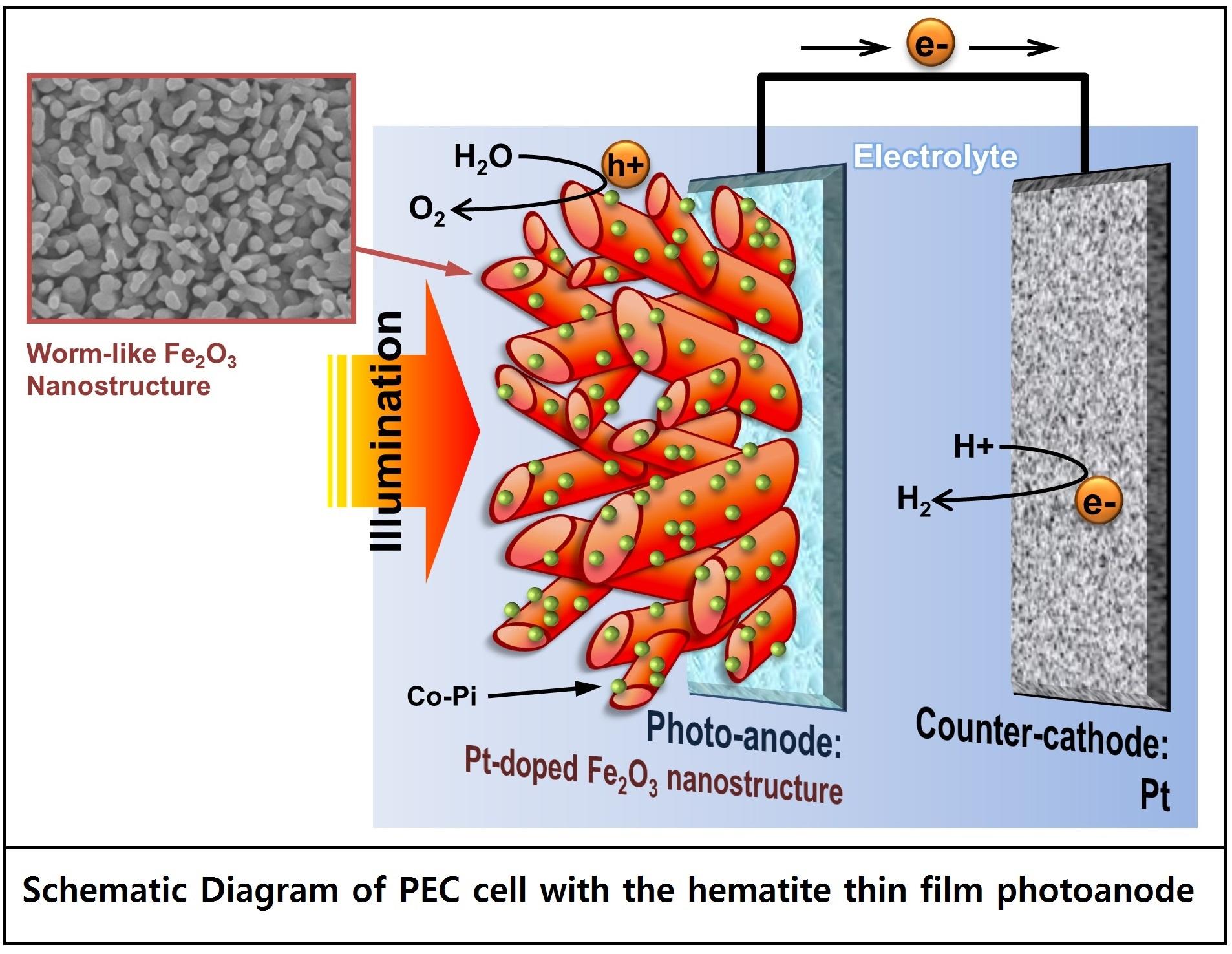 Wormlike Hematite Photoanode Breaks The World