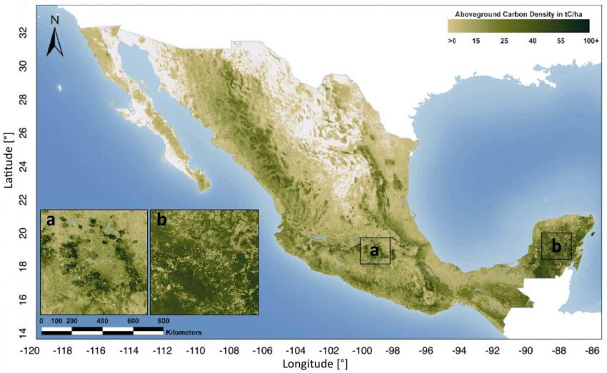 First detailed map of aboveground forest carbon stocks in Mexico ...