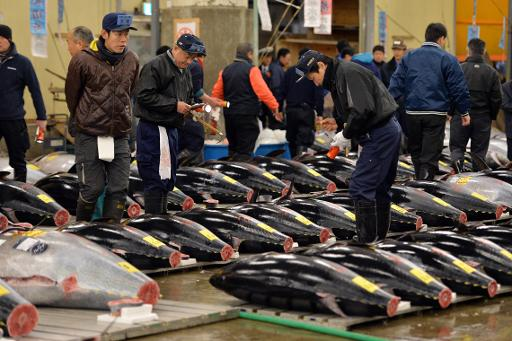 Pacific fisheries chief warns tuna stocks dangerously low for Pacific fish market
