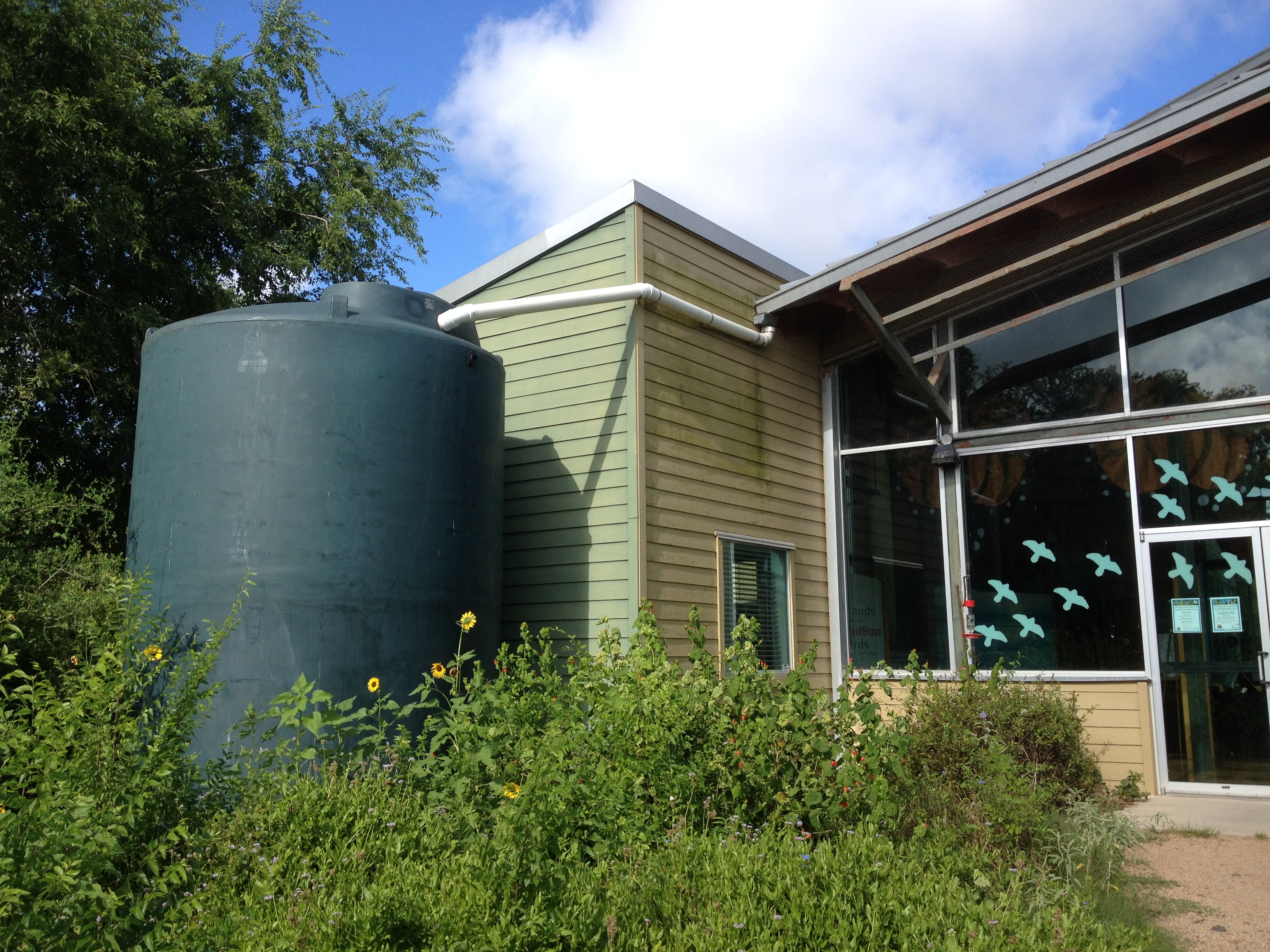 Rainwater harvesting 39 soaking in 39 as way to conserve texas for Rainwater harvesting at home