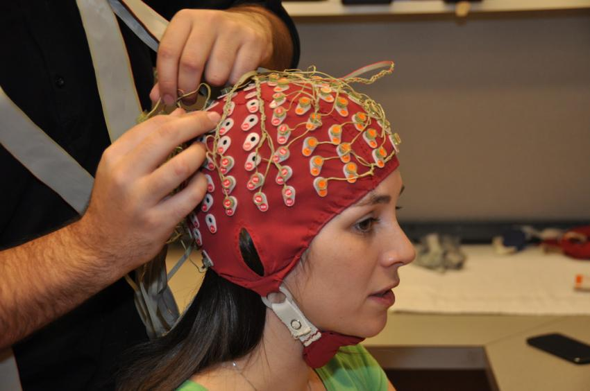 Scientists discover brain's anti-distraction system