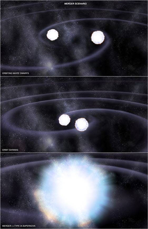 Type Ia supernovae stem from the explosion of white dwarfs ...