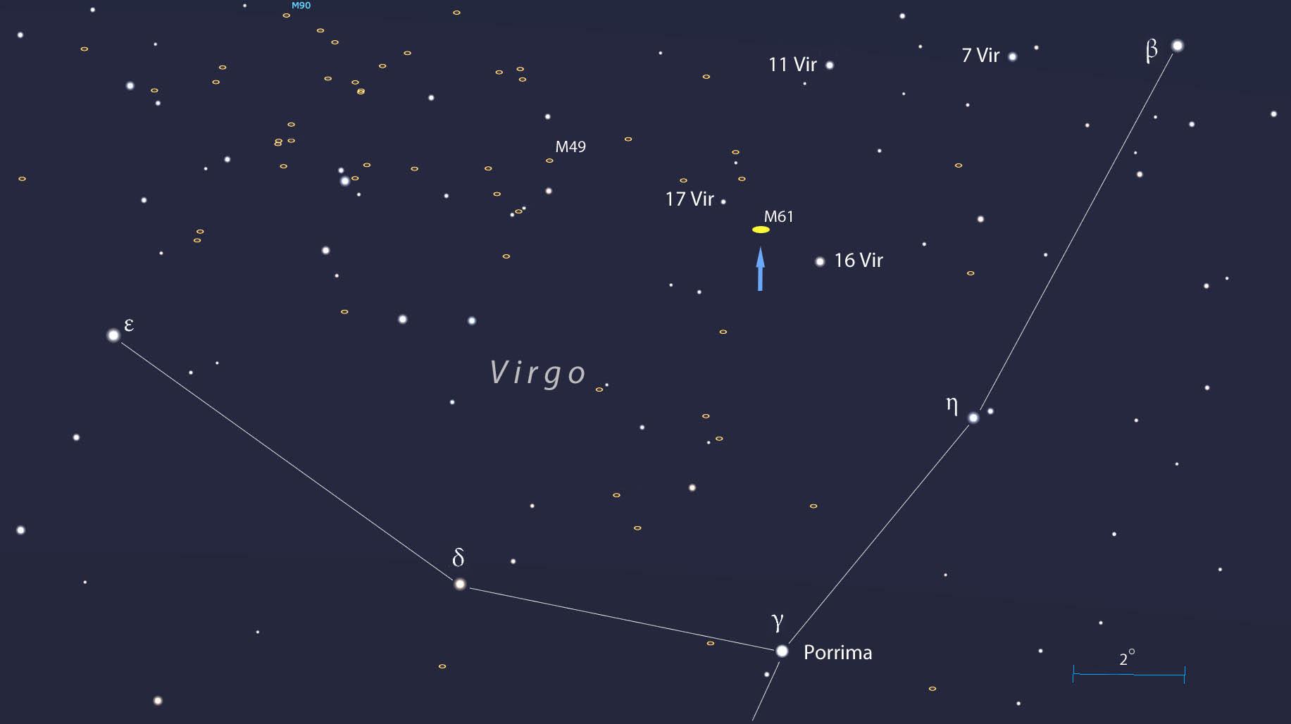 Possible bright supernova lights up spiral galaxy M61