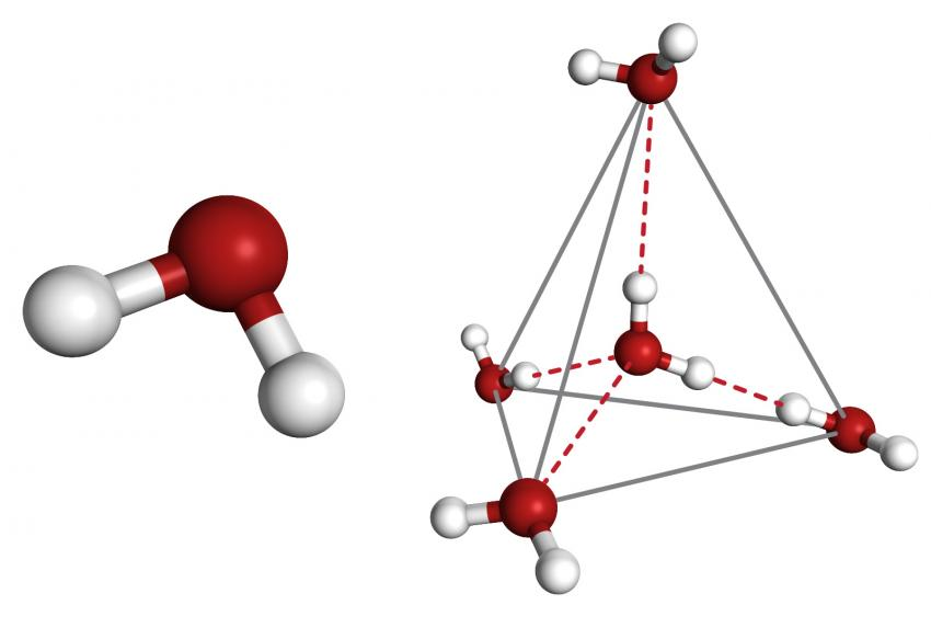 scientists take first dip into water s mysterious no man s land rh phys org Water Molecule Diagram Disrupted Water Molecules