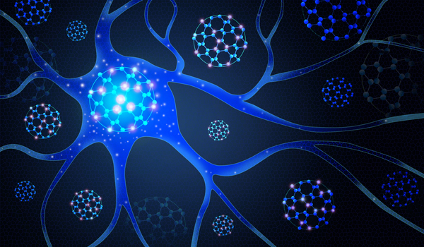 Scientists Reveal Complexity In The Brain U0026 39 S Wiring Diagram
