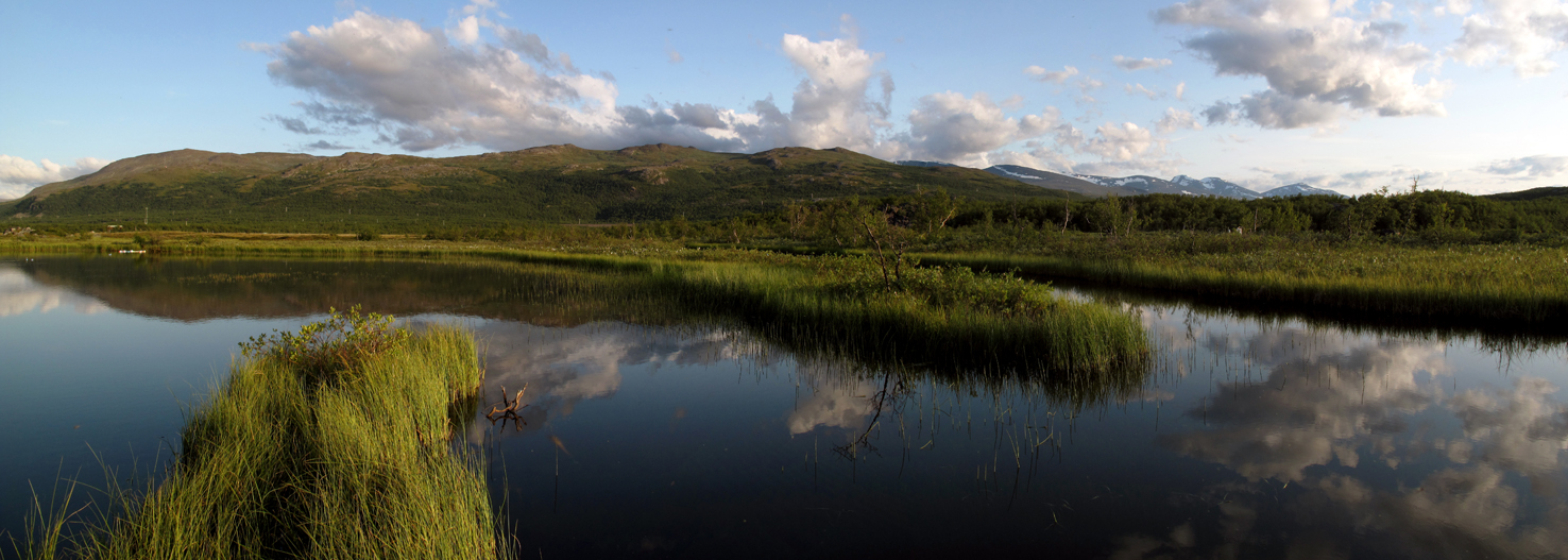 warming may increase methane emissions from freshwater ecosystems
