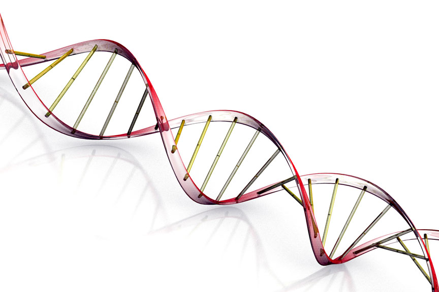 Researchers Detect Unwanted Effects Of Important Gene Manipulation