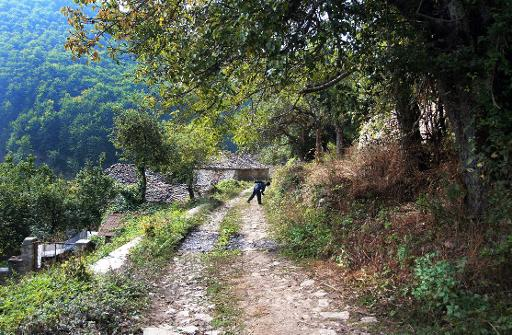 Image of: Killing An Albanian Boy Plays In The Village Of Gjergjevice On June 14 2010 Physorg Albania Bans Hunting To Save Endangered Animals