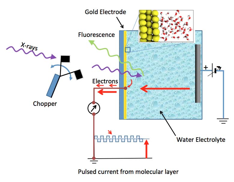 Team Reveals Molecular Structure Of Water At Gold Electrodes