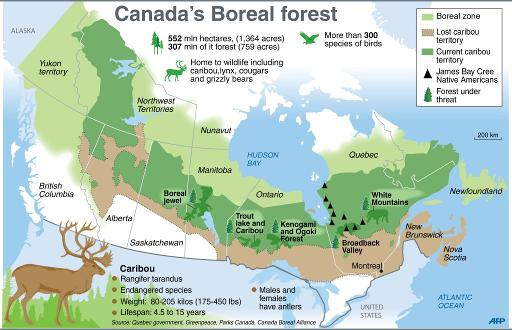Canada S Natural Resources For Kids