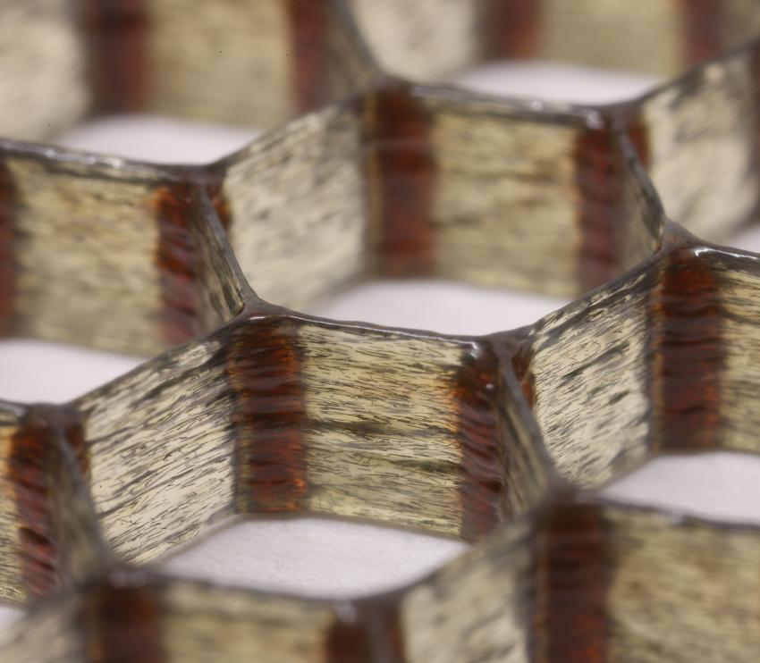 Carbon-fiber Epoxy Honeycombs Mimic The Material