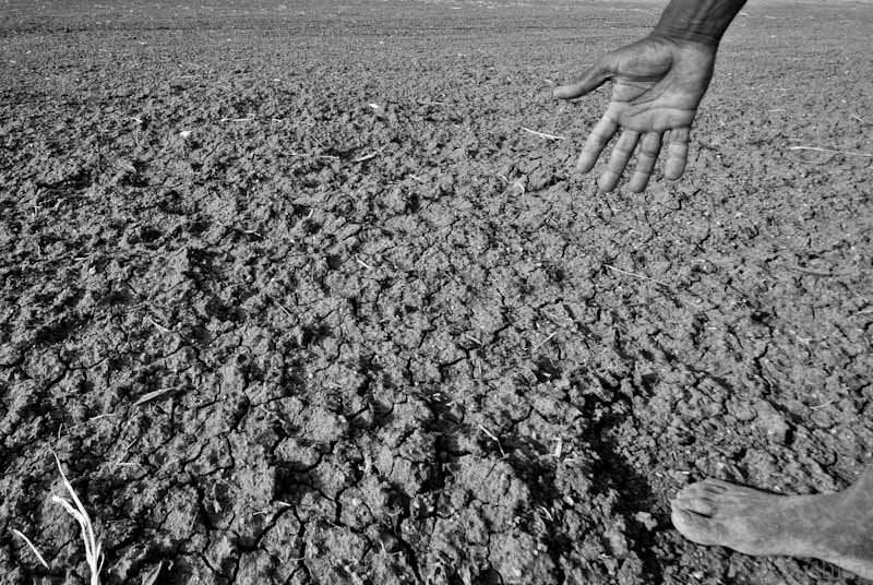 severe drought no longer caused just by nature a photograph of a farmer showing his affected plot due to drought in karnataka 2012 credit pushkarv