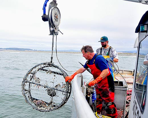 clean ocean of lost crabbing gear, Reel Combo