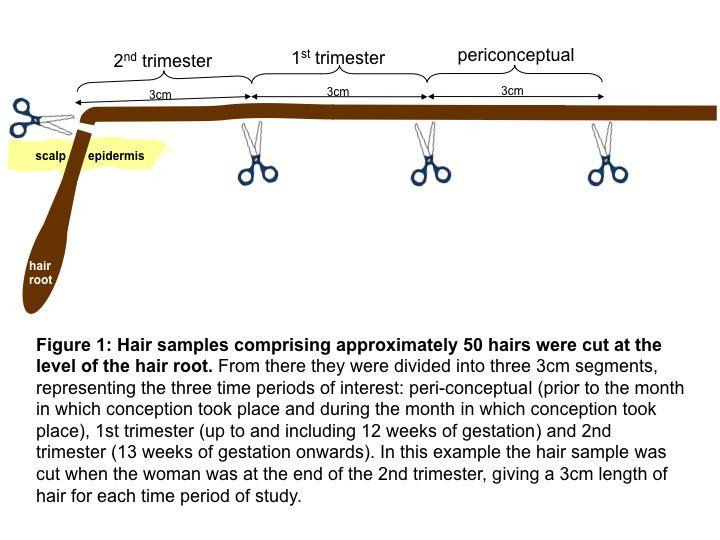 Drug tests on mothers' hair links recreational drug use to
