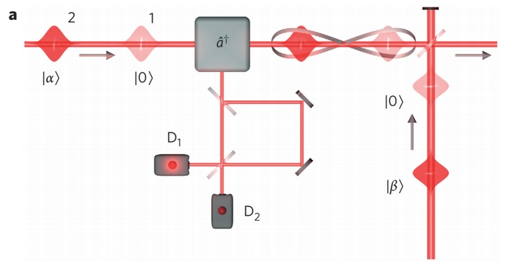 Entanglement between particle and wave-like states of light resembles Schrodinger's cat experiment