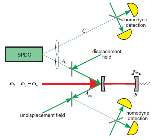 Micro-macro entangled 'cat states' could one day test quantum gravity