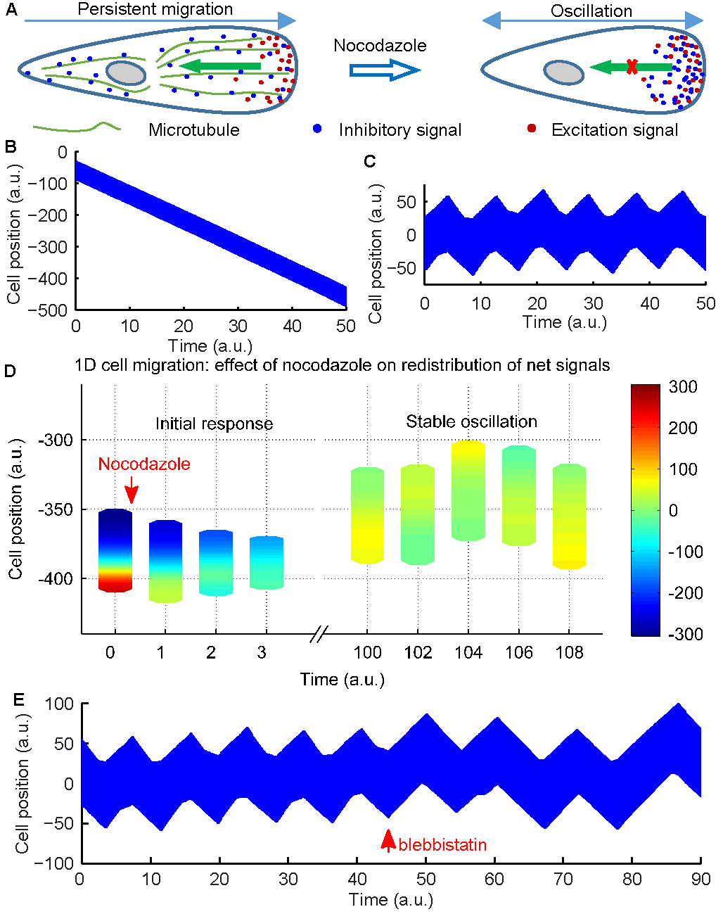 modifiedlegi going places microtubule mediated transport of inhibitory signals