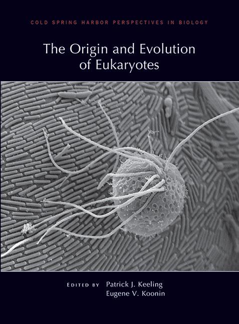 Origin Of The Eukaryotic Cell: Part I