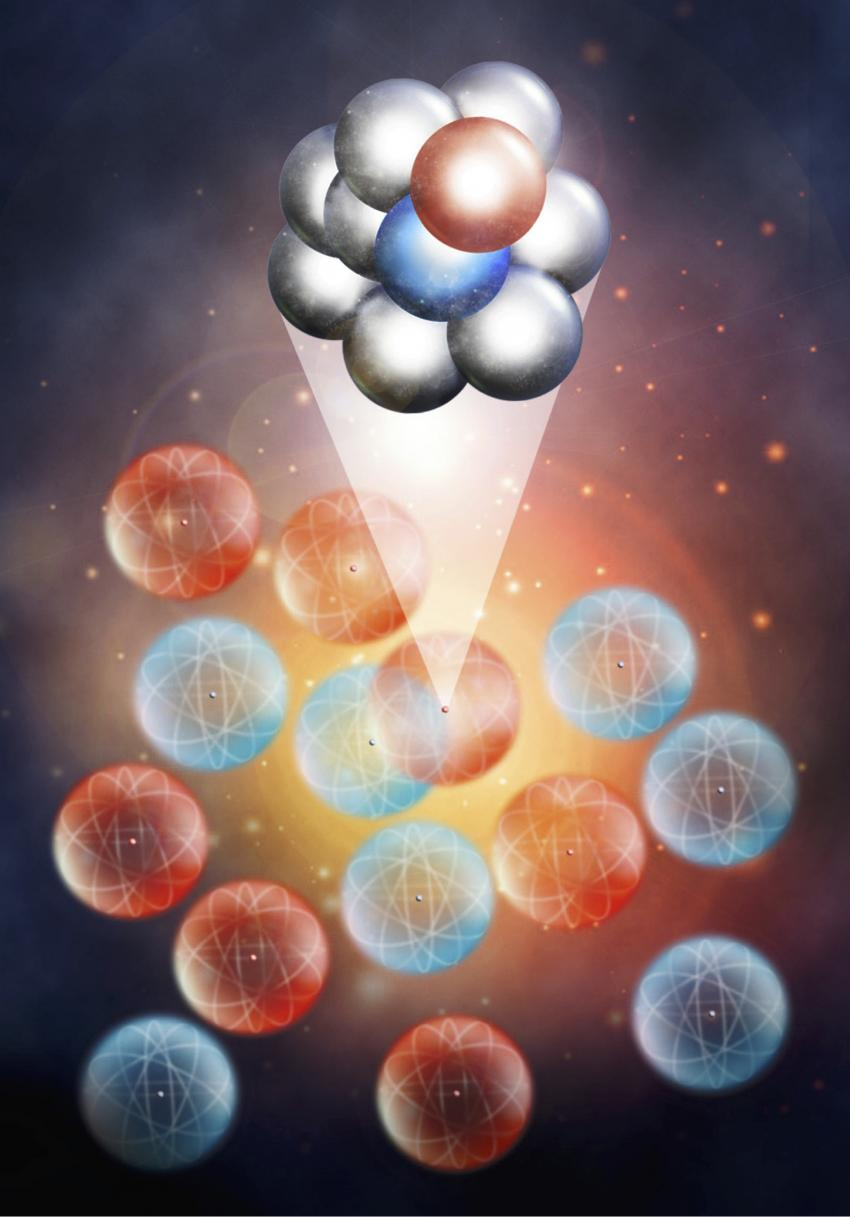 protons hog the momentum in neutron rich nuclei
