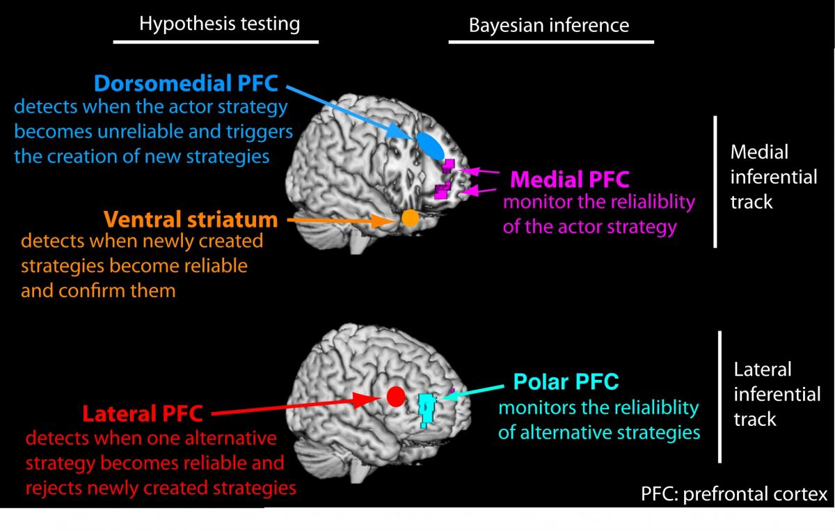 Upfront and personal: Scientists model human reasoning in the ...