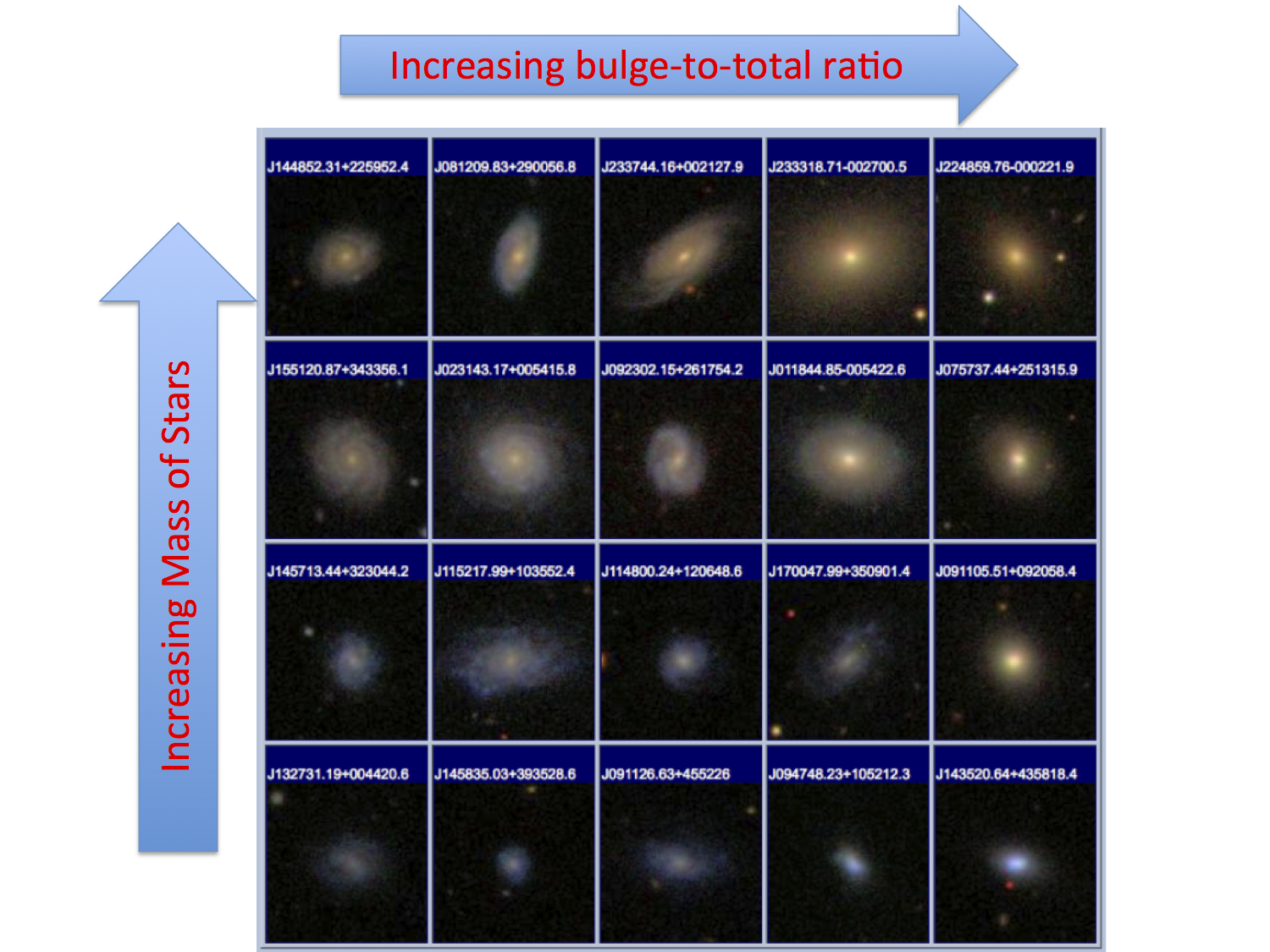 Red stars and big bulges: How black holes shape galaxies