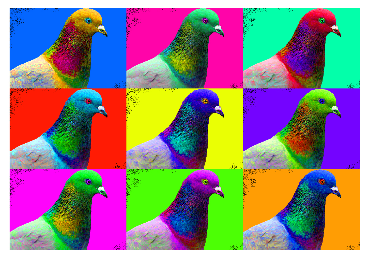 birds of a different color three major genes set feather hue in