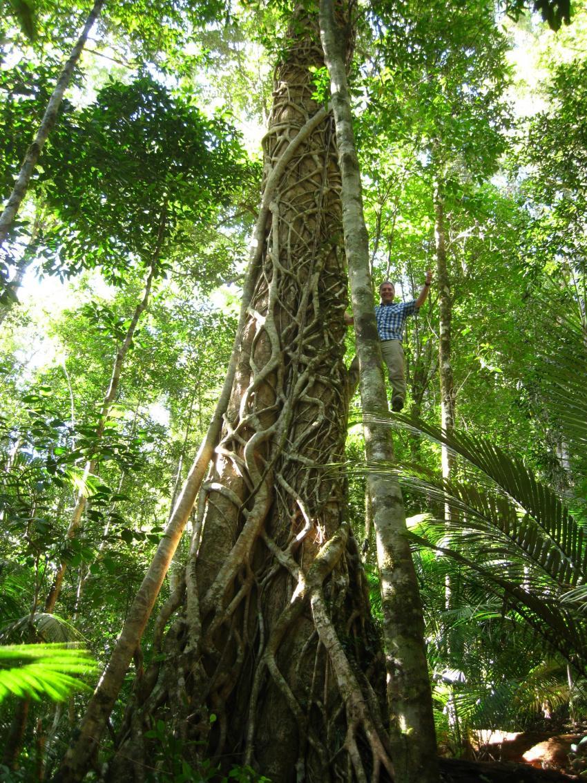 Biological Diversity – Study Guide