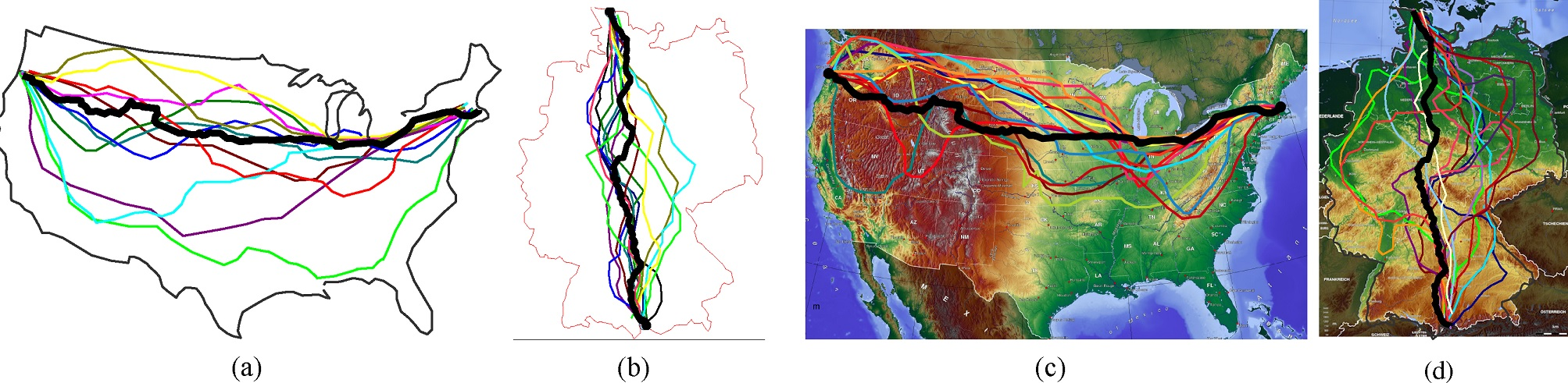 Can Slime Molds Offer Computing - Slime mold map of us