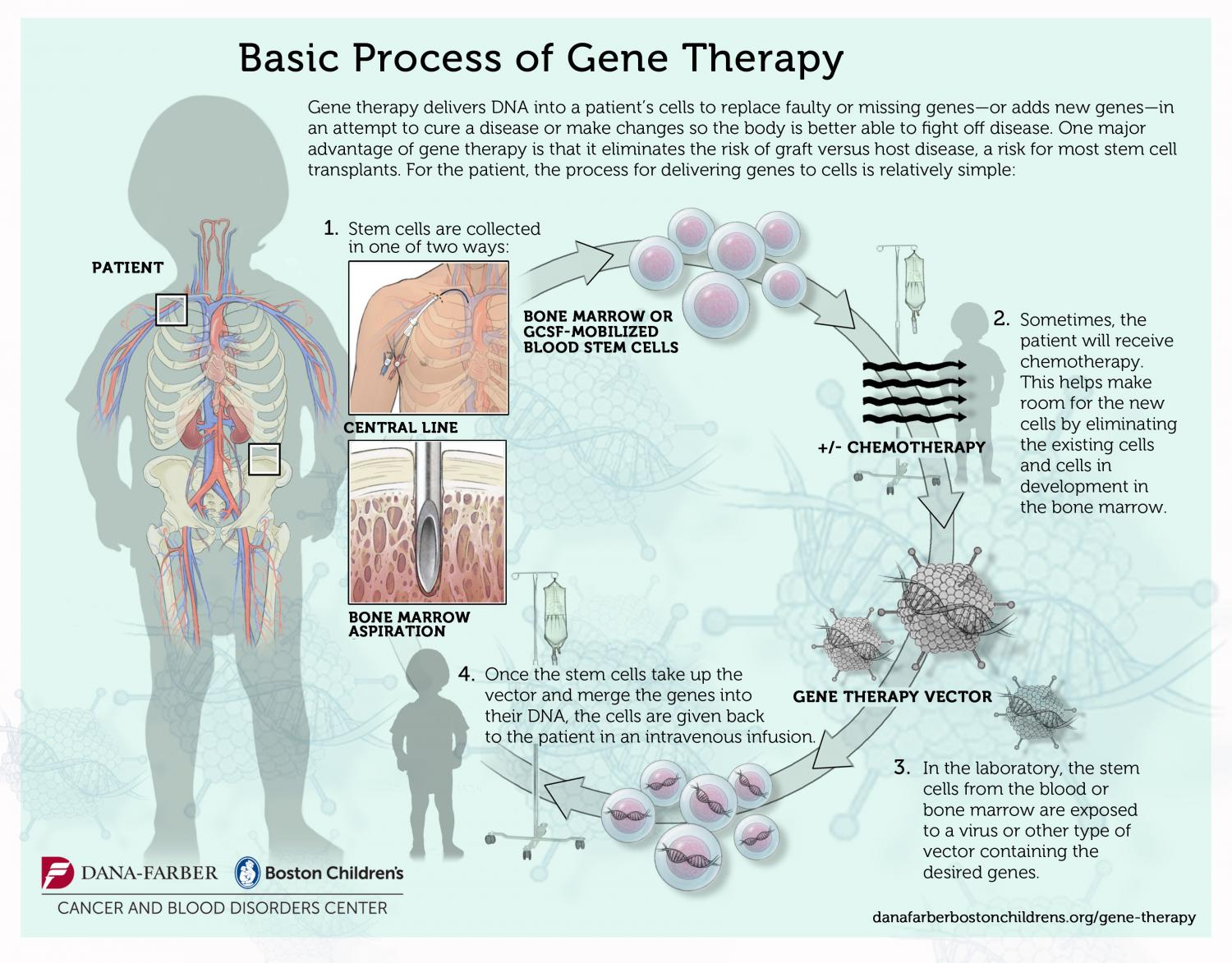Treatment of bubble boy syndrome with Gene therapy