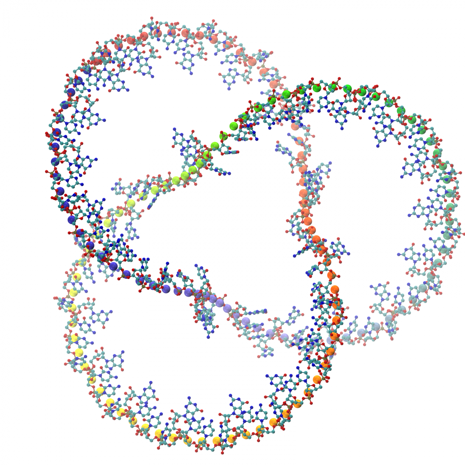 rna structure