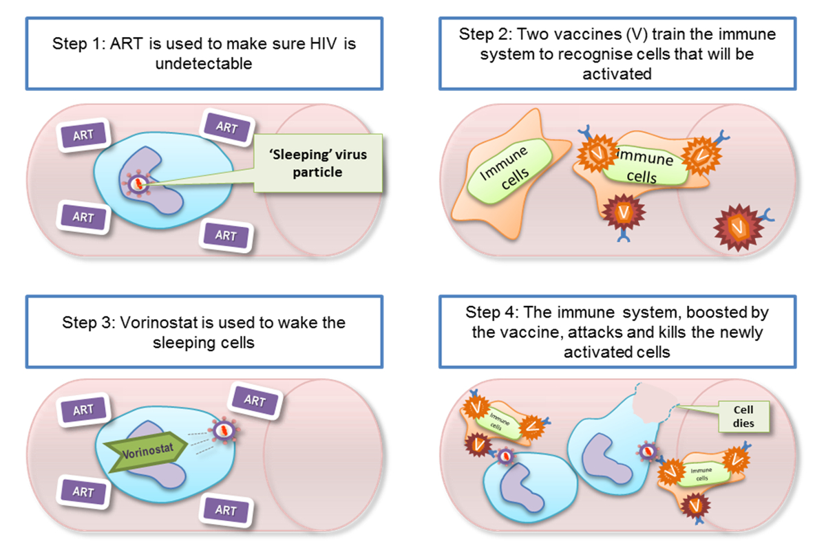 Targeting Hiv Reservoir Could Be First Step To