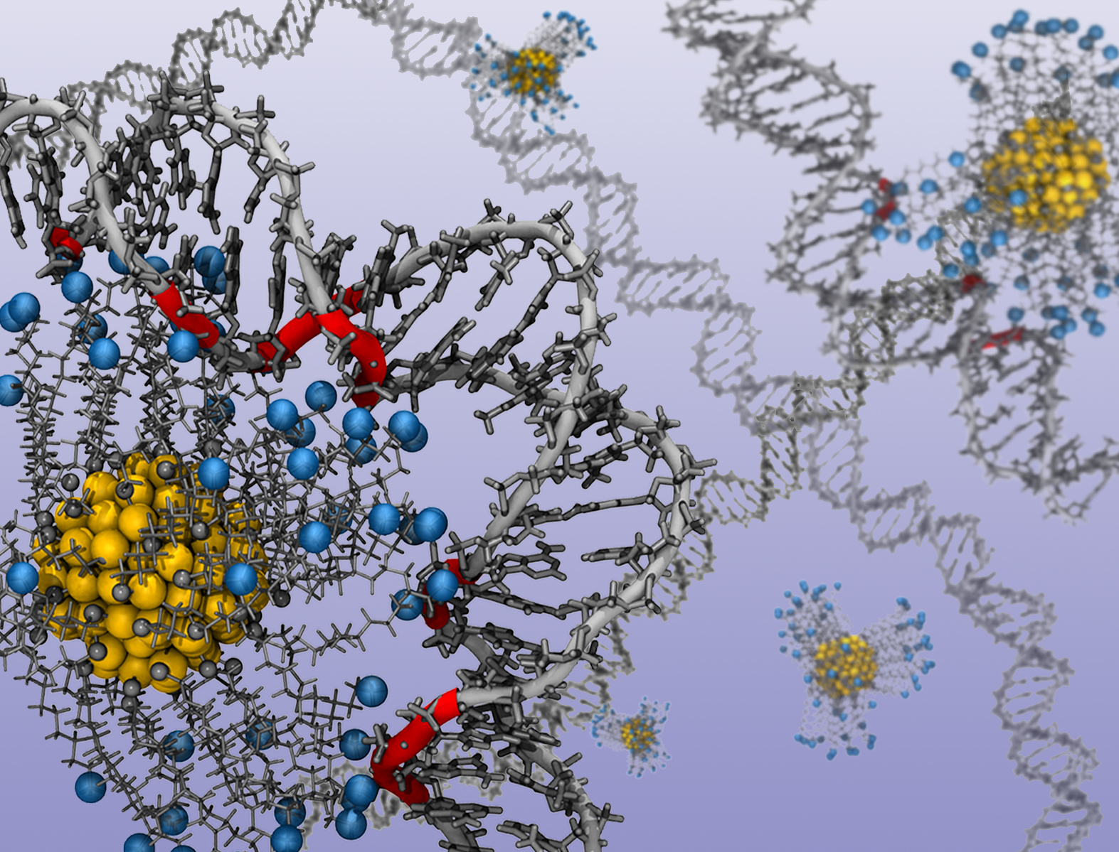Researchers Detail How To Control Shape  Structure Of Dna