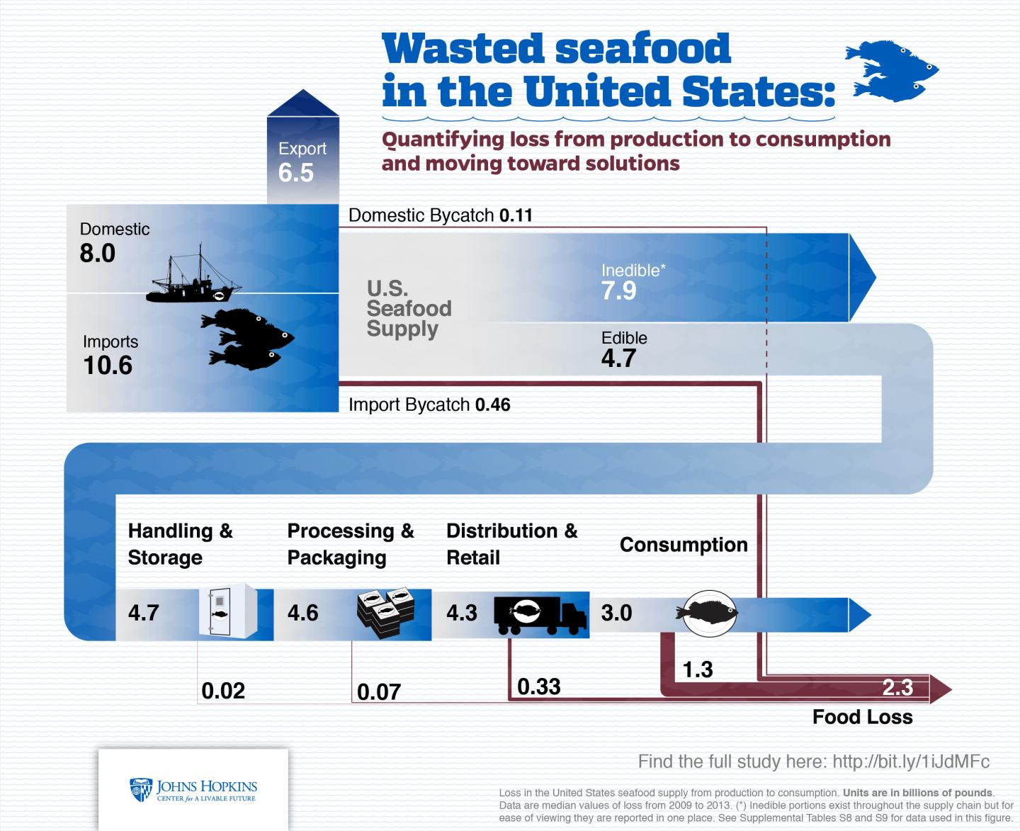 Nearly Half Of Us Seafood Supply Is Wasted
