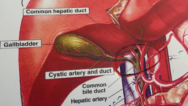 Procedure Offered For Patients With Inoperable Bile Duct Cancers