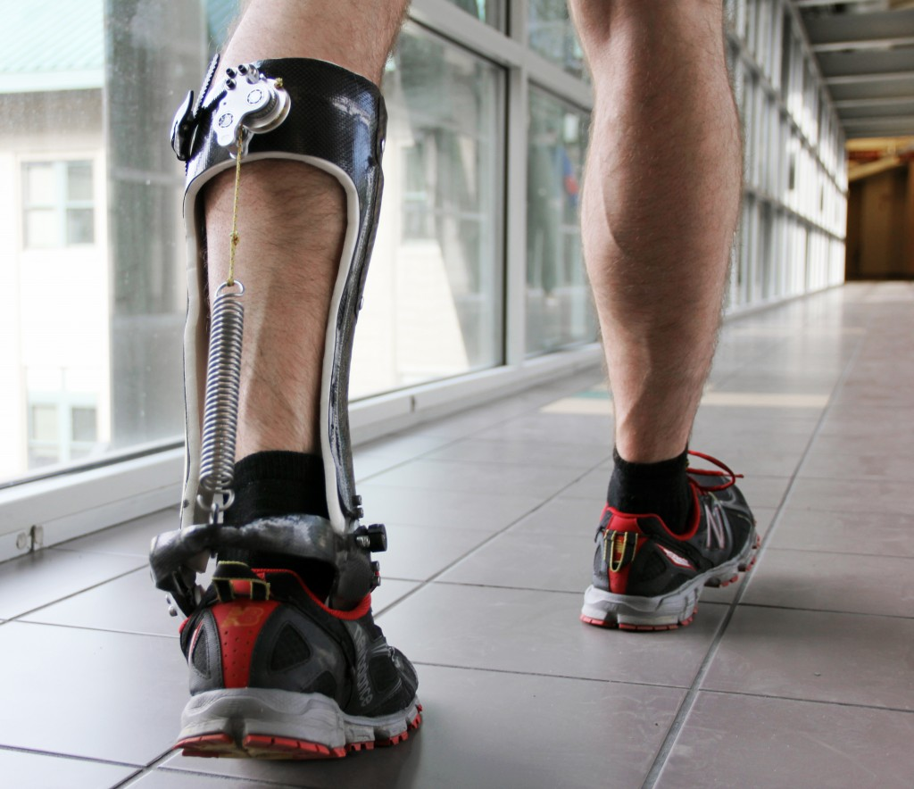 researchers improve efficiency of human walking (w/ video) (update), Muscles