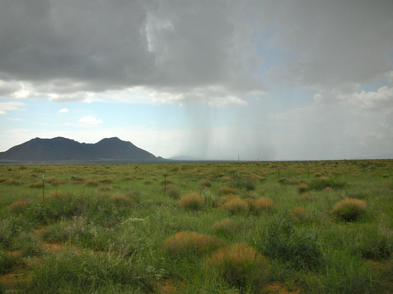 Tropical Savannas  Biomes of the World