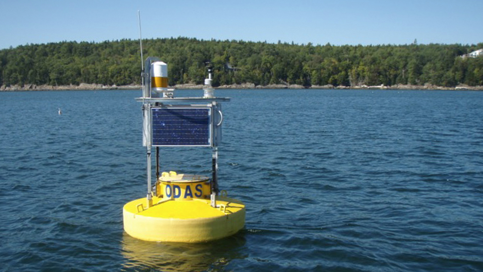 buoy data to inform how aquaculture fits into working waterfront