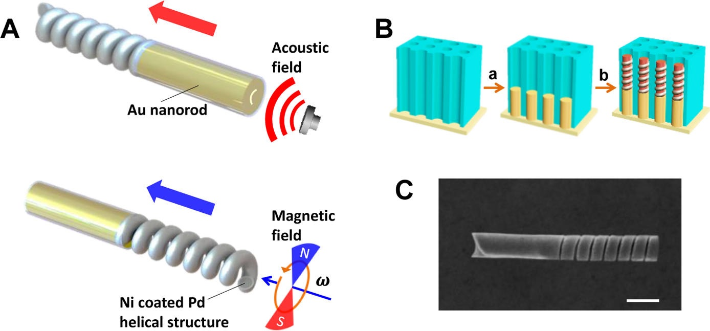 Fuel-free nanomotor is powered by ultrasound and magnetic fields