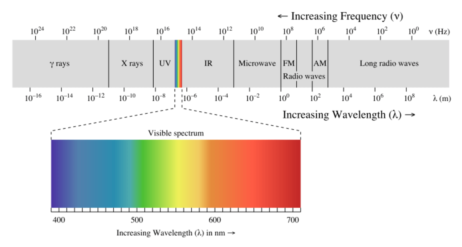 In Future The Internet Could Come Through Your Lightbulb Incandescent Light Bulb Diagram Group Picture Image By Tag Frequencies On Electromagnetic Spectrum Are Underused While To Either Side Is Congested Credit Philip Ronan Cc Sa