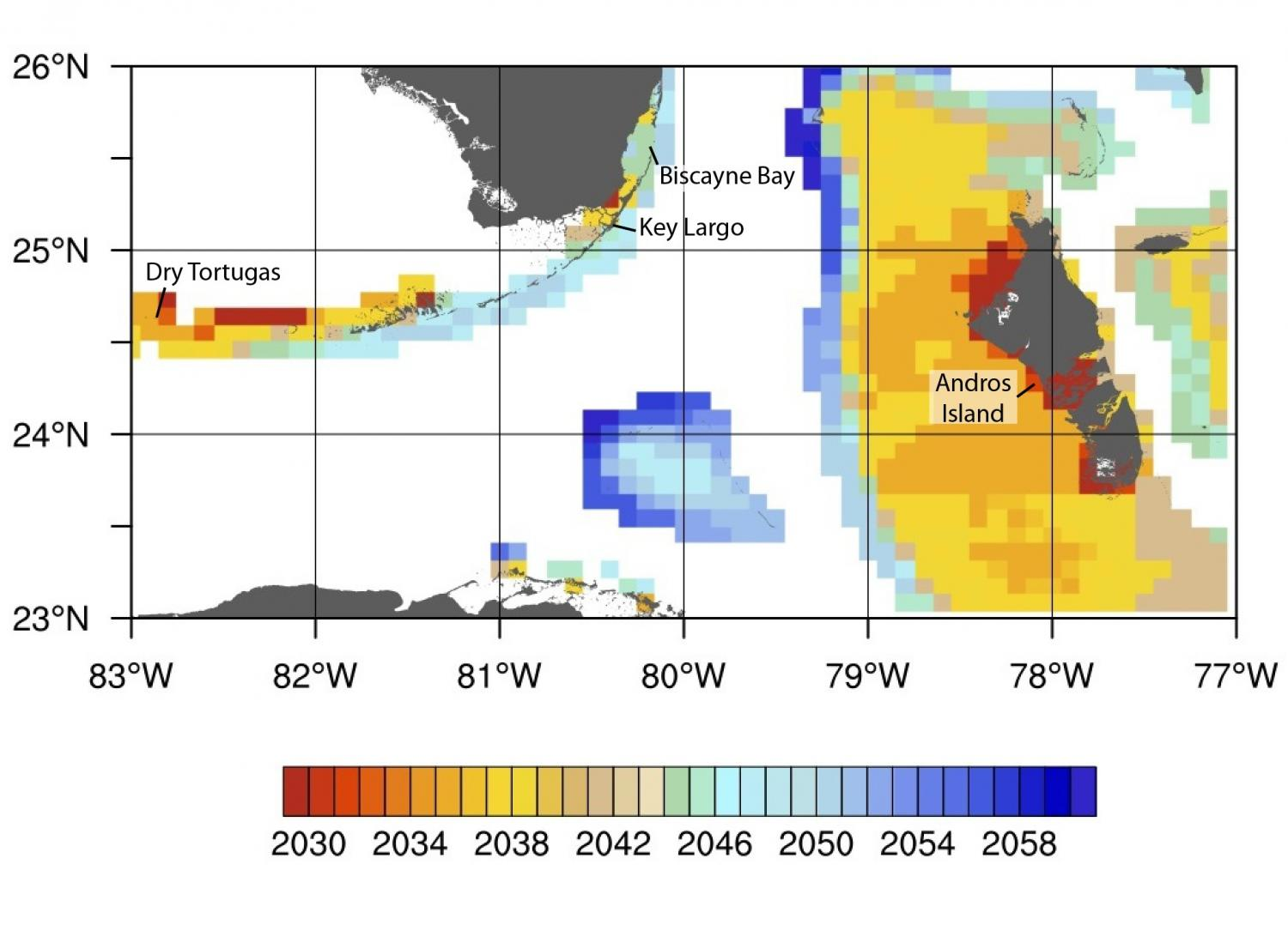Study Provides Detailed Projections Of Coral Bleaching