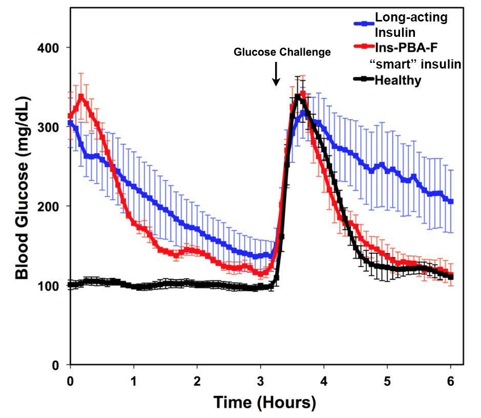 Novel Smart Insulin Automatically Adjusts Blood Sugar In Diabetic
