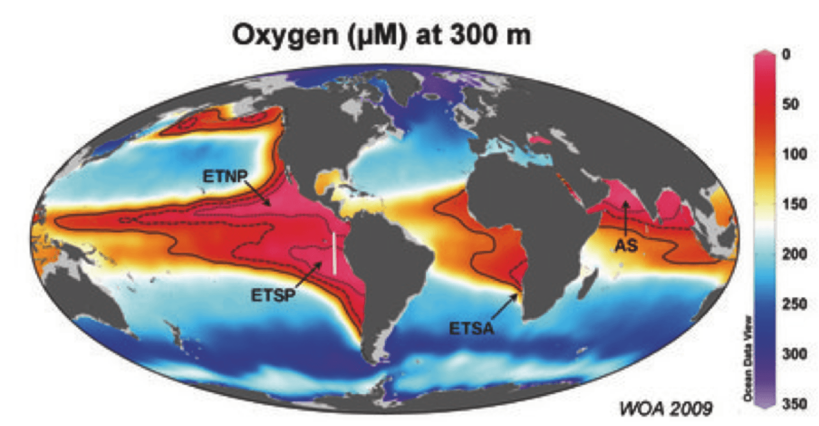 Ocean dead zones a growing disaster for fish oxygen levels at 300m with extremely low oxygen oceanic dead zones marked in red credit world ocean atlasmax planck institute for marine microbiology publicscrutiny Images