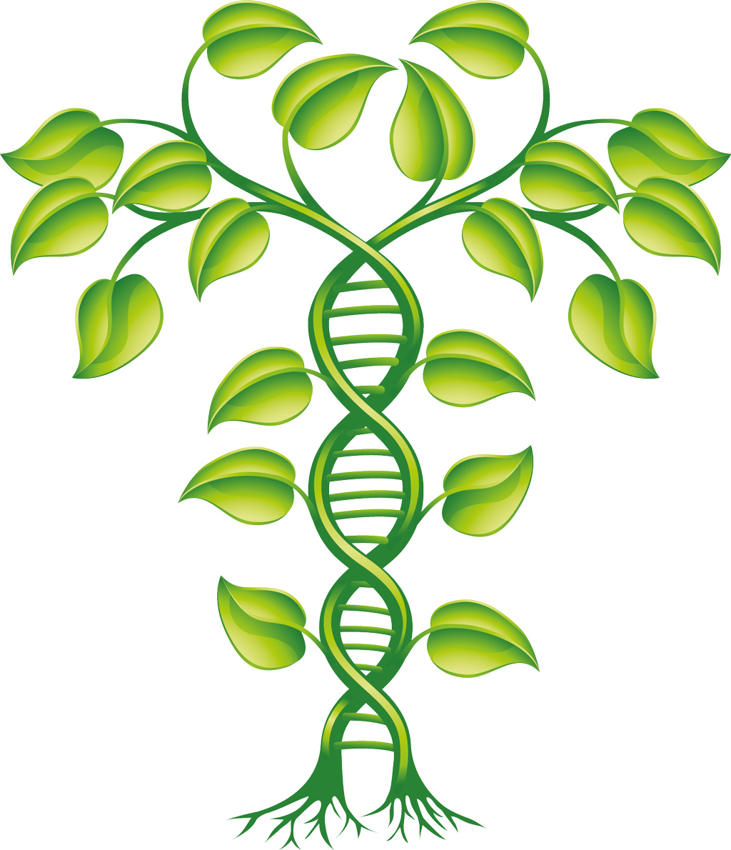 Plant protein structure database will help to uncover unknown functions of pl