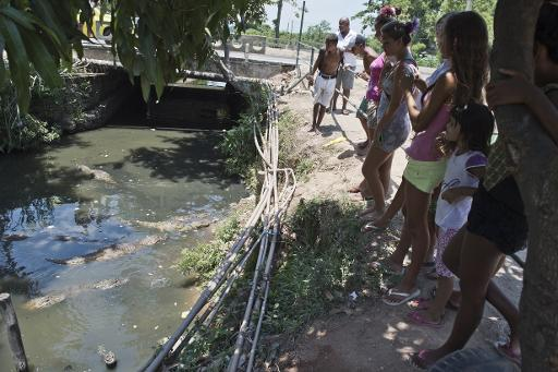 Quest Near Me >> In Rio favela, hungry caimans complicate water hunt