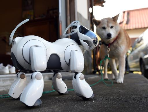 In Japan Robot Dogs Are For Life And Death