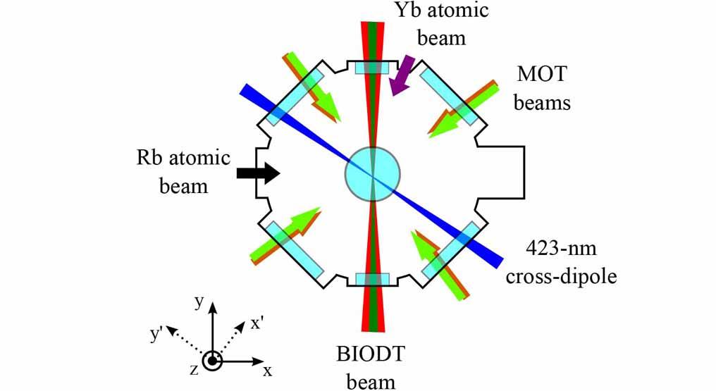rubidium atoms used as a refrigerant for ytterbium atoms