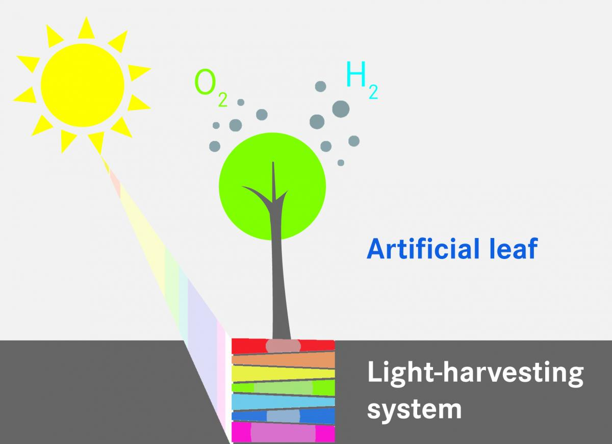 The Path To Artificial Photosynthesis