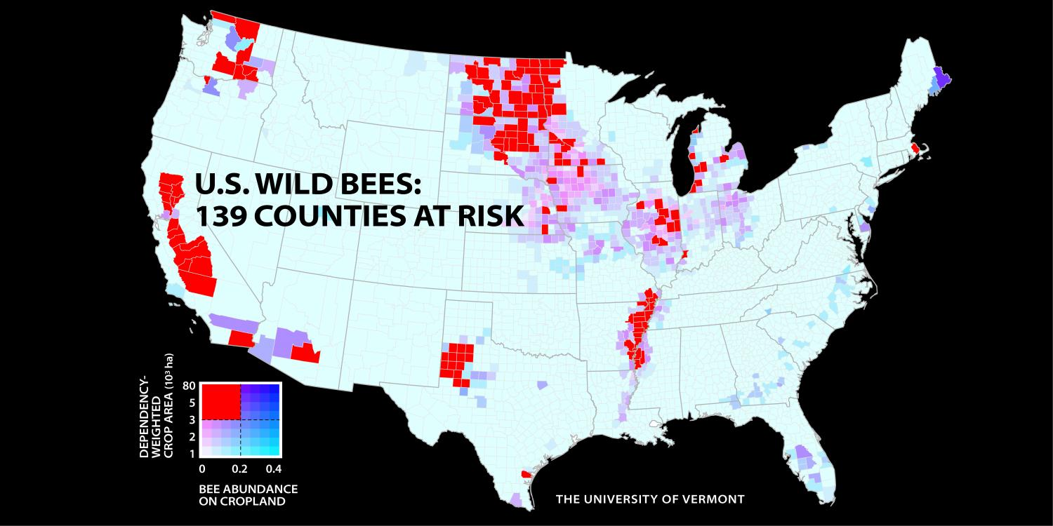Bee Decline Threatens US Crop Production - Great Plains On Us Map