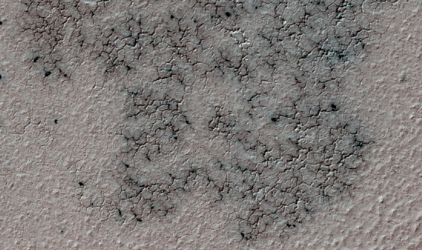 Citizen scientists seek south pole 'spiders' on Mars